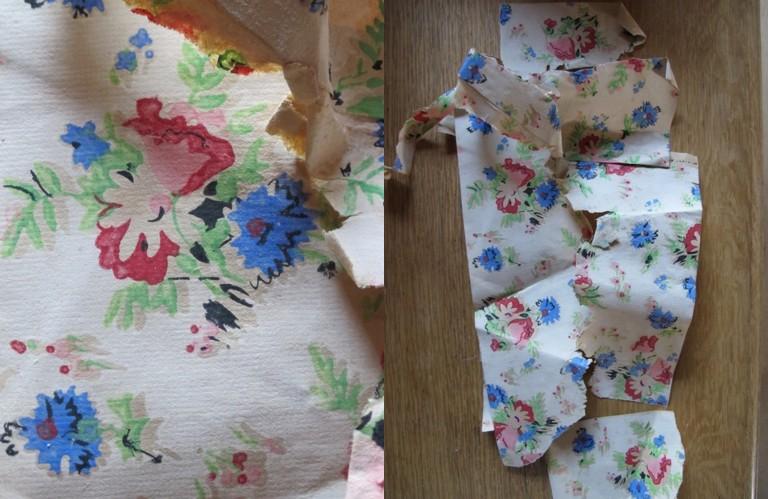wallpaper bleuets