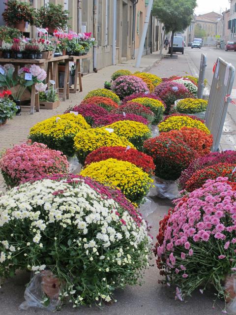 fleurs at the floriste