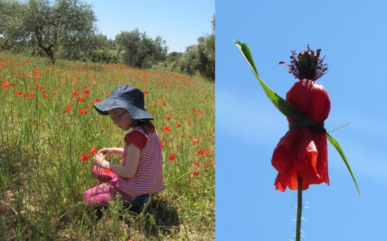 lilas in poppies and a poppy person!