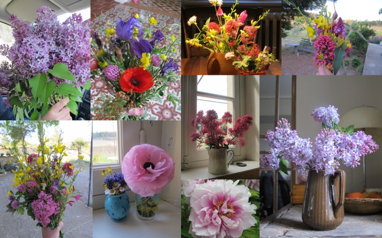 Spring collage!