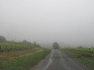 a wet wet road
