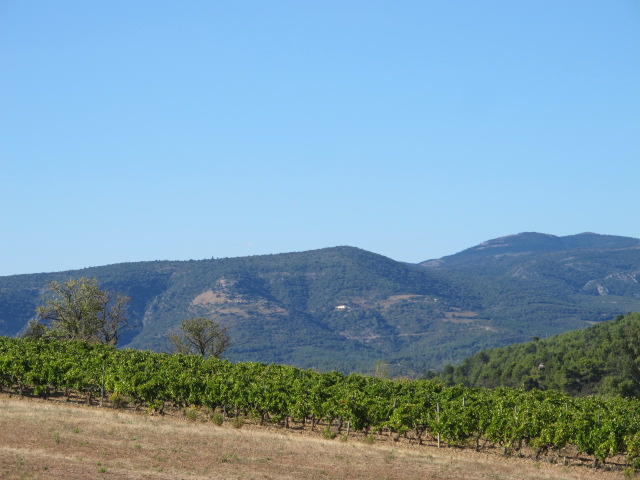 the view from Chateau Maris