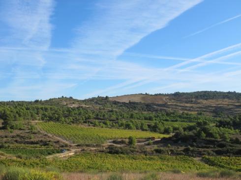 harvest in Calamiac