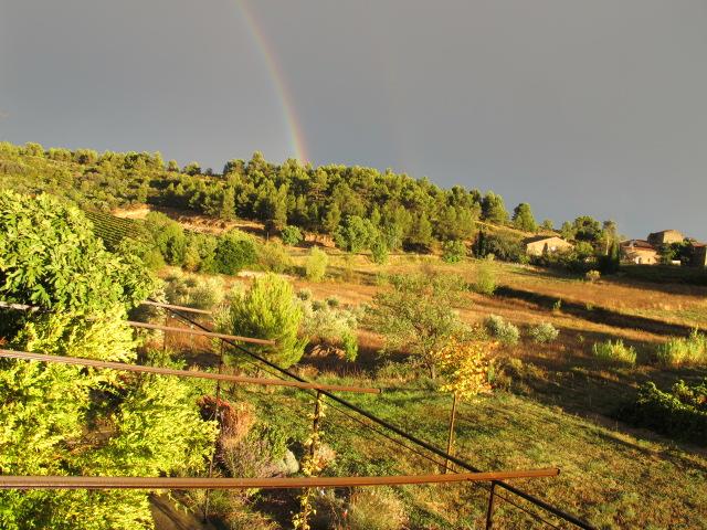 calamiac rainbow