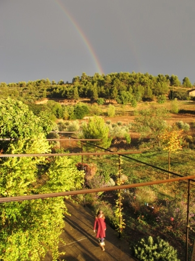 lilas rainbow