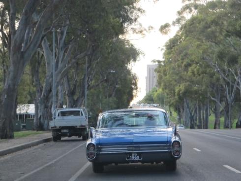 cruising in Adelaide