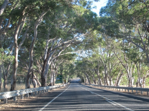 heading to some of my favourite beaches in South Australia