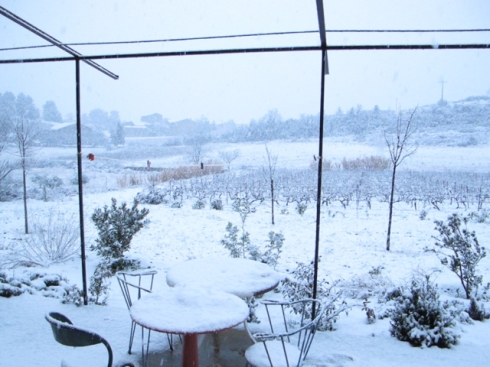 snow calamiac