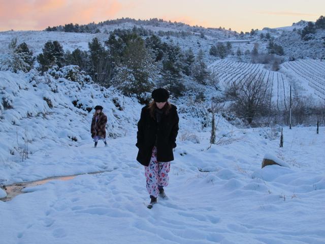 snow walk 2