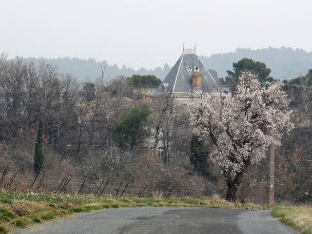 It's starting to snow, approaching Chateau Violet - a beautiful old wine property near us