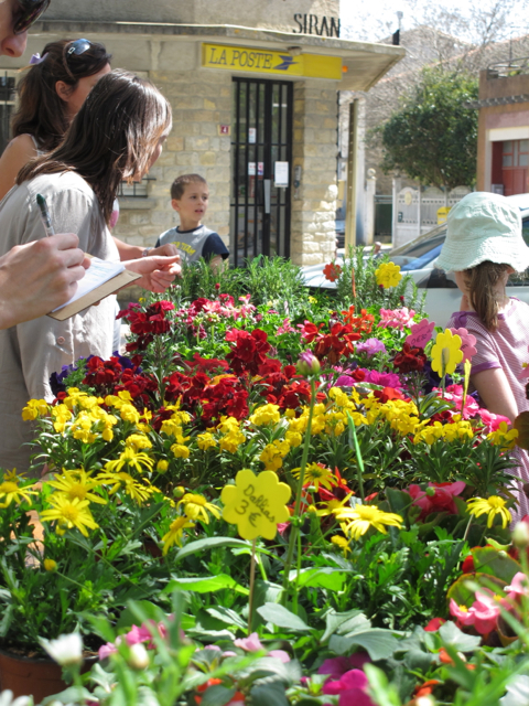 our school held it's first of two 'Marche aux Fleurs'