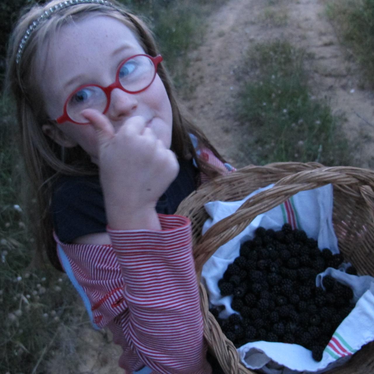 berry picking season 2