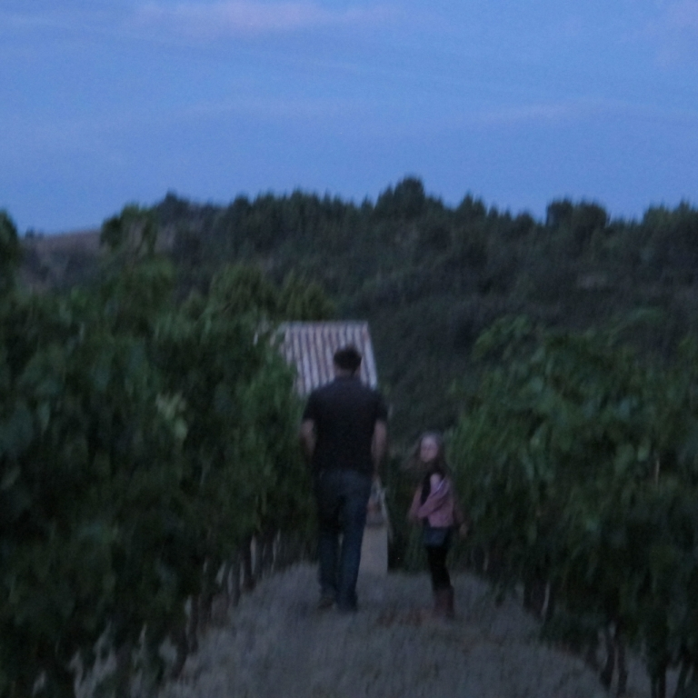 grape walk 2