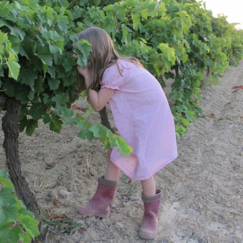 lilas checking grapes