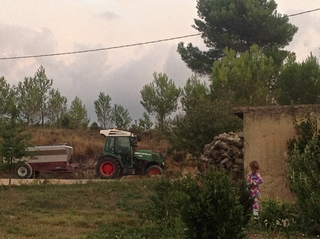 checking out the noise... a tractor cruising down the driveway